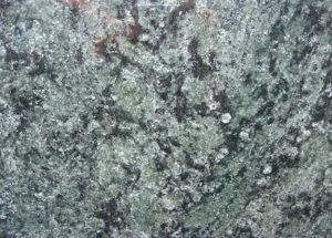 Verde Olive Südafrika | Gesteinsart: Metamorphit | Untergruppe: Migmatit | Herkunft: Südafrika | Alter: >100 Mill. Jahre